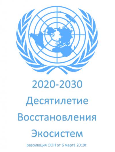 ООН объявила 2020-2030 - десятилетием восстановления экосистем
