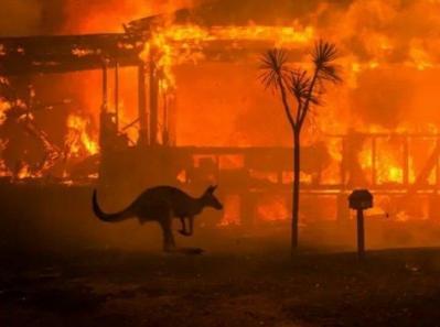 Arde Planeta... Ce putem face?
