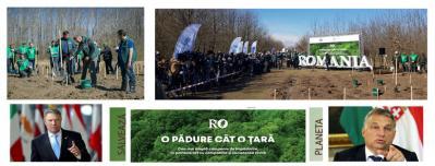 România și Ungaria plantează păduri în mase. Care sunt noile strategii ecologice propuse de statul Ungar pentru îmbunătățirea ecologiei, aflați cele 8 puncte!