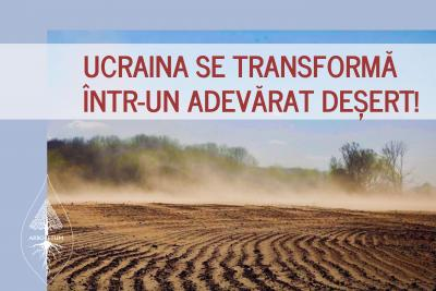 Defrișarea pădurilor aduce consecințe grave în Ucraina