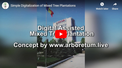 Plantare Mixtă Digital Asistată [VIDEO]