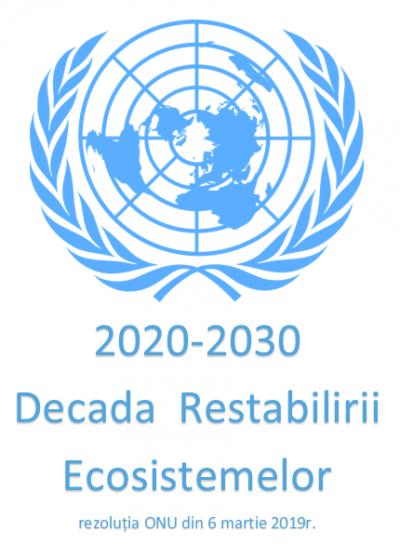 ONU a declarat 2020-2030 - decada restabilirii ecosistemelor