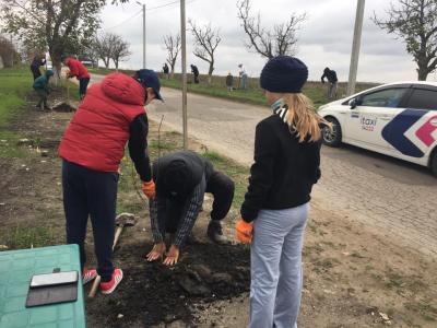 Жители Келтуиторь, организовались для озеленения села