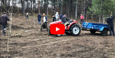 More than 100 new trees were planted at the National Botanical Garden of Moldova [VIDEO]