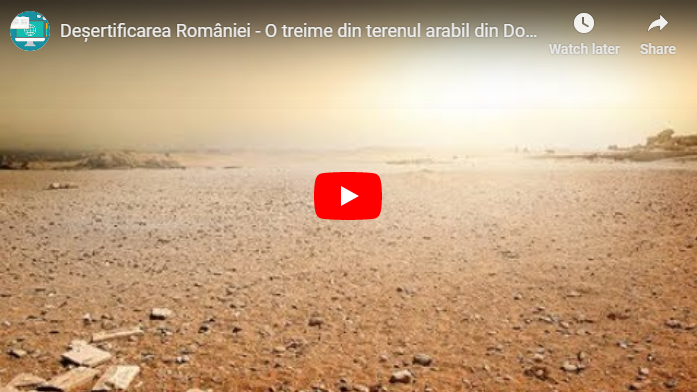 Deșert adevărat în sudul României [VIDEO]